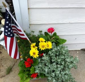My mom's first visit, and she made sure I had planters of my favorite flower so it would feel like home.